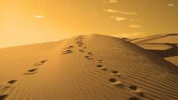 Karya-Karya Ilmiah Tentang Nabi Muhammad